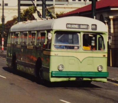 Trolleybus [Leyland No.85]