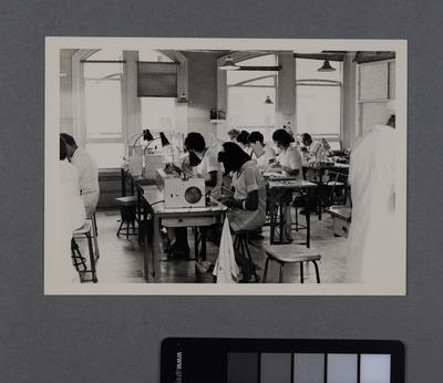 [Hirst Contact Lens laboratory technicians at work stations]