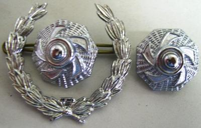 Rank Insignia - Wreath and Pips