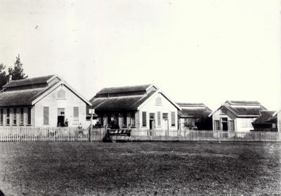 Auckland Municipal Abattoir. Bullock Track , 1890