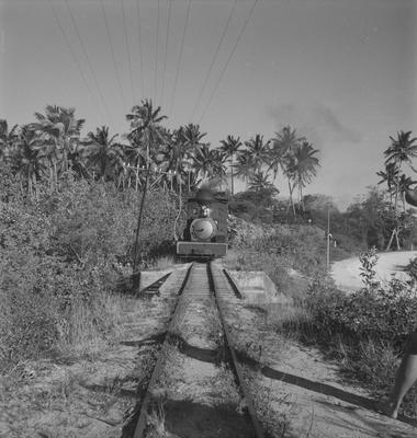 Cane train at Fiji
