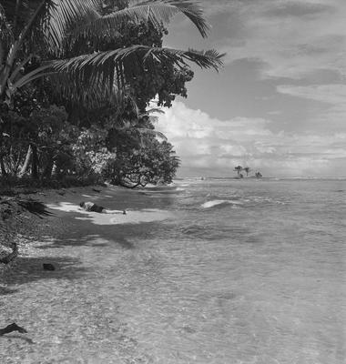 Beach scene at Tahiti