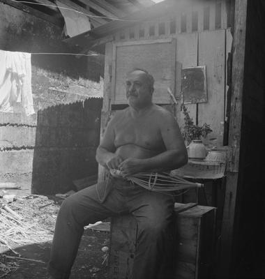 Tahitian making a fish trap