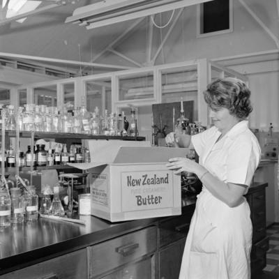 Butter and cheese grading, 1961