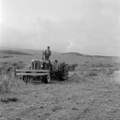 South Taranaki farm improvement club, Aug 1962
