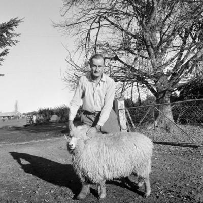 Drysdale fleece, c 1967