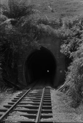 Photograph of Hoteo tunnel 5