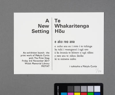 Te Whakaritenga Hōu (A New Setting)