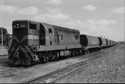 Photograph of locomotive DA 1487