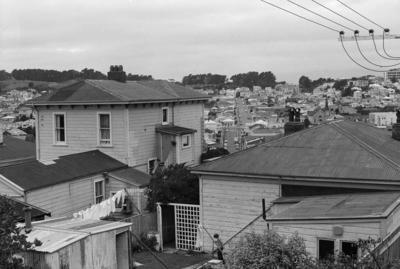 Photograph of Wellington suburbs
