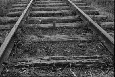 Photograph of Glenbrook Vintage Railway