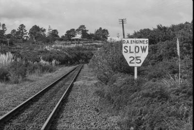 Photograph of speed warning sign