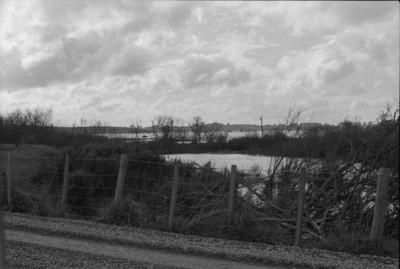 Photograph of Waikato river