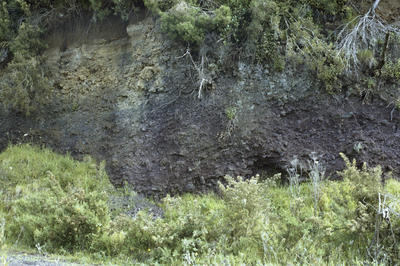 Photograph of Kawiti ballast quarry