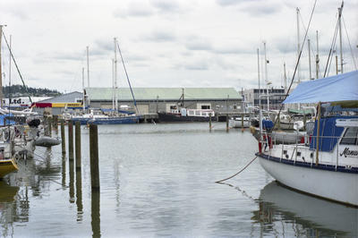 Photograph of boats in Whangarei harbour