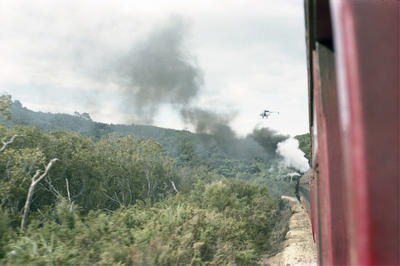 Photograph from excursion train, Opua line