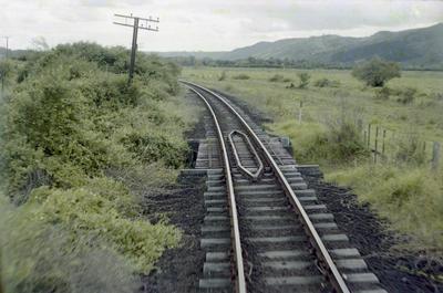 Photograph of Otiria - Kawakawa line