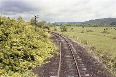 Photograph of track north of Kawakawa, Opua line.