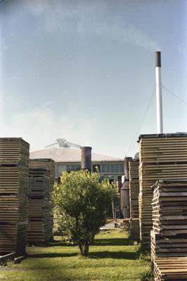 Photograph of timber merchants yard
