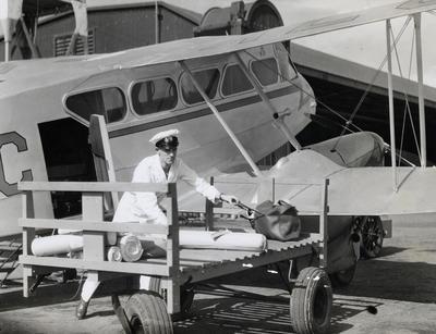 NAC DH 89 Dominie