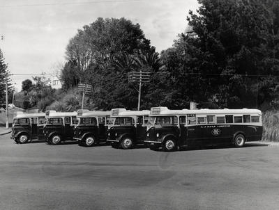 L J Keys Ltd buses at St Heliers