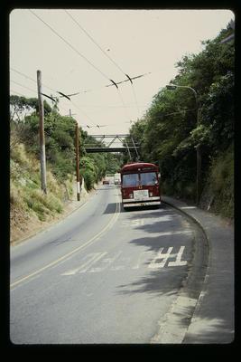 NZ Trolley Bus