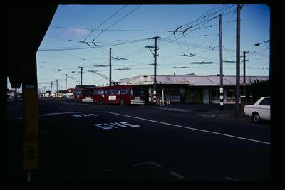 Miramar Jct Buses from Seatoun