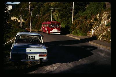 Roseneath Route 15 Te Anau RD.; Peter Moses; 1978