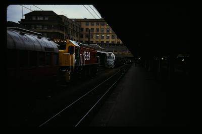 Wellington Station Silver Fern + Commuter Train