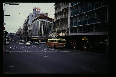 Dunedin Trolley Bus