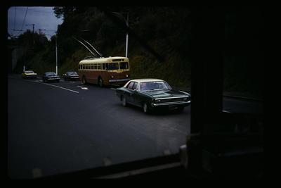Dunedin Trolley Bus George St