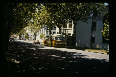 Auckland Trolley bus shuttle service