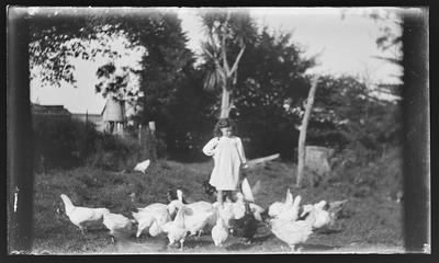 [Black and white glass plate negative of unidentified child with chickens]