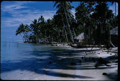 [Beach huts and shoreline]