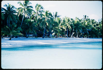 [Island beach on the Coral Route]