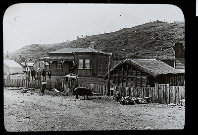 [Pig farm and houses]