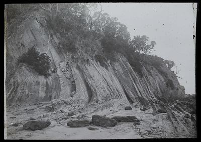 Waitemata beds. Displaced strata