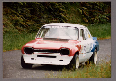 [Ford Escort automobile on grass]