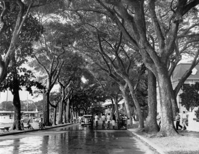 Photograph of a street in Papeete