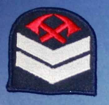 Patch [Arm Badge Rank Patch]